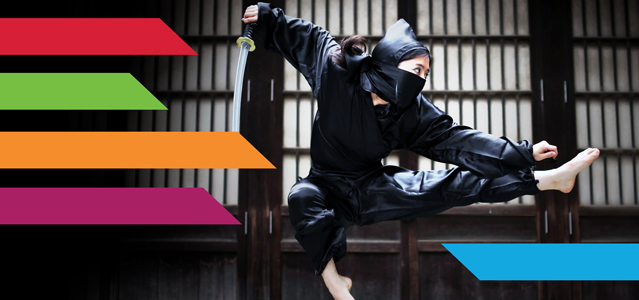 Ninja Moves to put your Marketing in the Black - Lightspeed Marketing Communications - Raleigh NC